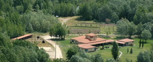 Campamento Almenara 2014