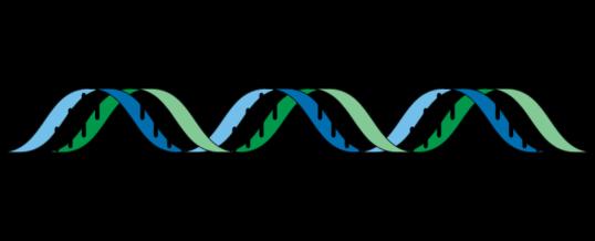 Descubren 100 genes relacionados con los Trastornos del Espectro Autista